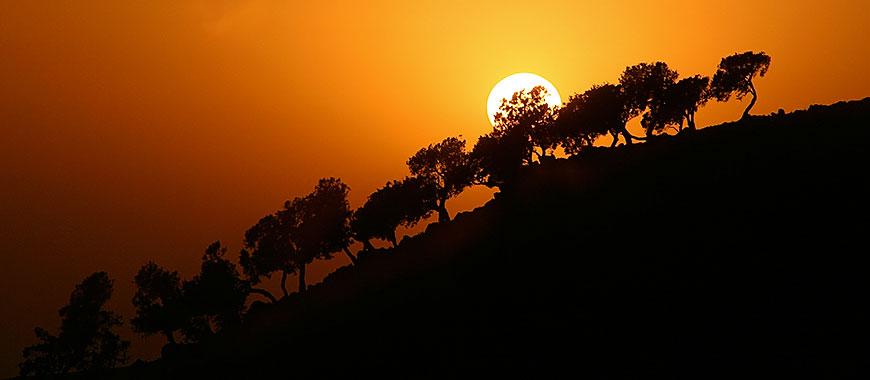 Ethiopia_Treck_6